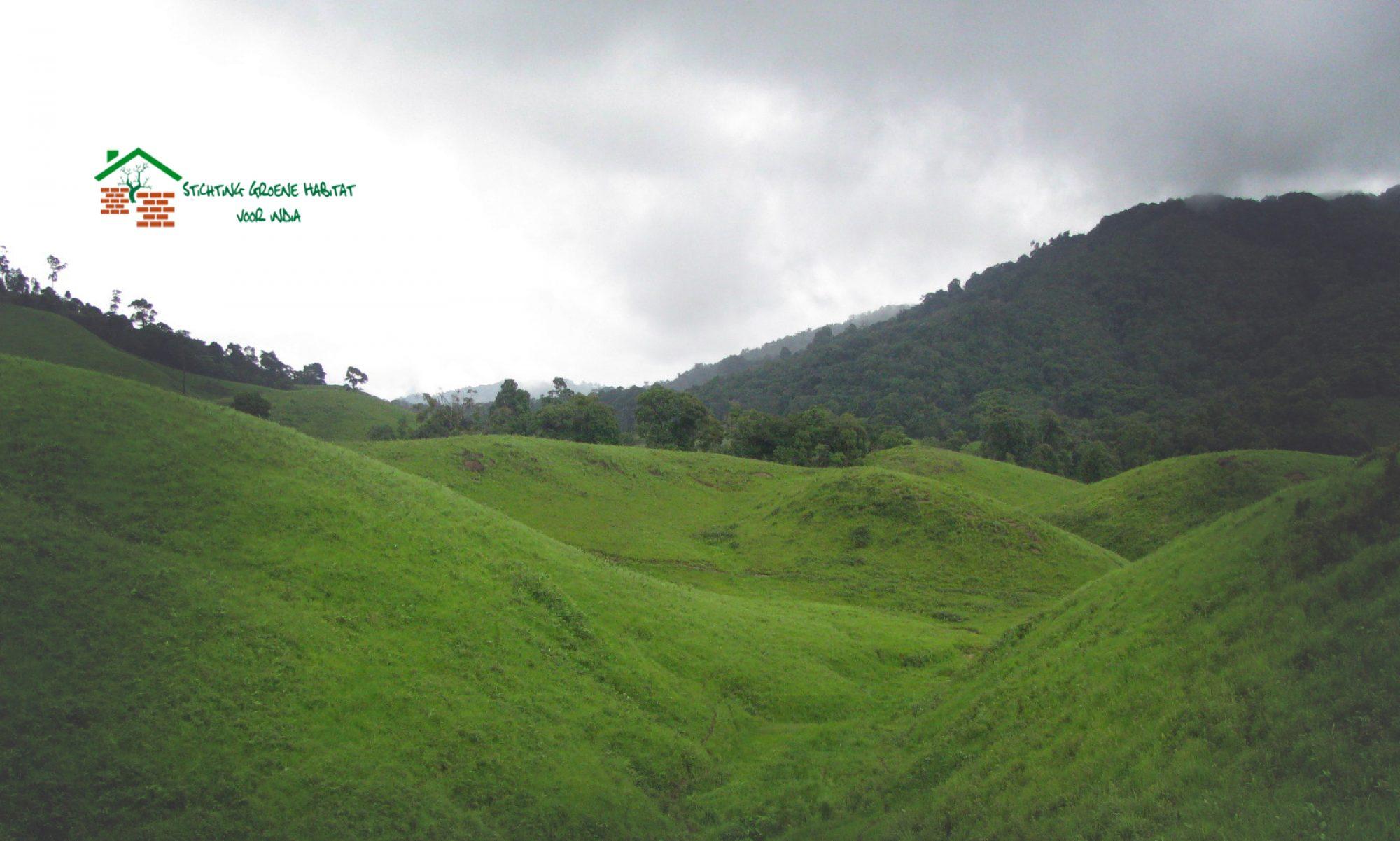 Stichting Groene Habitat voor India